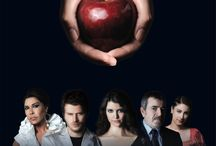 Aşk-ı Memnu / Halid Ziya Uşaklıgil'in Aşk-ı Memnu adlı romanından uyarlanan dizi; Ziyagil ailesi ve etrafında yaşananları konu alıyor.