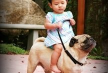 Children riding pugs