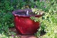 Water fountain in a planter, solar driven