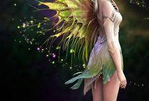fairies world