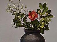 Flower arrangement - ikebana