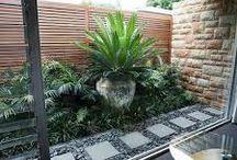 Small terrace garden ideas