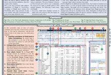 Work Excel