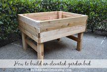 Veg Garden Boxes