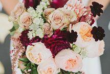 Burgundy blush flowers