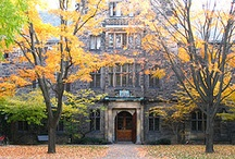 University of Toronto / The University of Toronto is the oldest and largest university in Canada.  Globally, it is ranked in the world's Top 20 universities (THES, 2011).