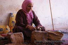 Experiencias de viajes a Marruecos