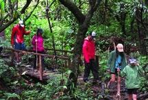 Hiking Panama / Information about hiking in Panama.
