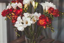 My favorite flowers