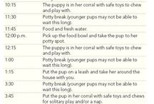 Puppy stuff