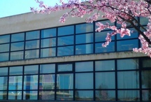Nuestras bibliotecas=Our Libraries / Instalaciones de la biblioteca universitaria: salas de lectura, rincones de lectura, puestos informatizados, salas de trabajo en grupo...