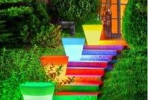 Colorful / by Evrim Uslu