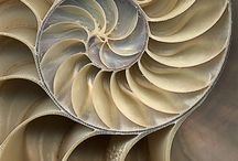 Vzory, posvátná geometrie