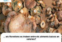 Rovellons / Níscalos / Aquí trobaràs curiositats sobre els rovellons / Aquí encontrarás curiosidades sobre los níscalos
