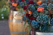 2018 wedding-Jenn Tompeck