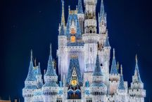 Disney Amusement Parks / by Desiree Wildman