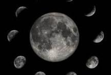 lunar gardening