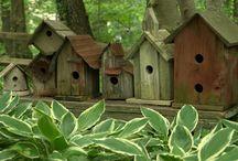 Vogelhuisjes / birdhouse