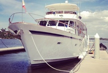 iCruise Sydney Harbour Boats / Some of our boats you can hire