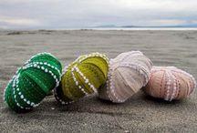The Funky Seascape / by Jan Hillier