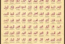 Many terms given to God/Allah