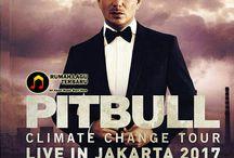 Pitbull Akan Kembali Datang Ke Indonesia