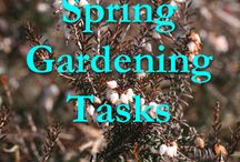Help my little garden grow / All things I need to know about gardening.