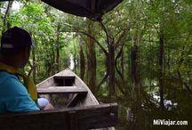 El Amazonas colombiano