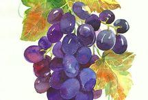 Uvas cacho
