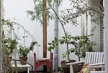 Love garden interior