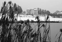 Winter in Bollina
