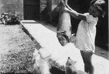 Subiektywny wybór obrazów wg Bressonowskiej koncepcji decydującego momentu