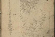Patron de broderie pour jupe / Embroidery designs of Jean-François Bony, circa1800-1815 (Style developed earlier)