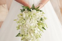 Dendrobium Orchid Wedding Flowers / See beautiful pics of wedding flowers for inspiration.  Take advantage of our free flower tutorials and learn how to make bridal bouquets, corsages, boutonnieres, table centerpieces and church decorations.  Buy wholesale flowers and discount florist supplies.