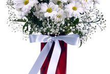 Çiçek Siparişi / İnsanlar neden çiçek siparişi verirken CicekVitrini.com u şeçiyor.? İşte nedeni bu çiçekler olsa gerek  http://www.cicekvitrini.com/cicekler/cicek-siparisi-ver