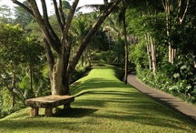 Where We've Just Been / A selection of our healthy holidays that we've just come back from, featuring resorts from Como Shambhala in Bali to Buccament Bay in St Vincent. Read our reviews by clicking the links in our photos below http://healthandfitnesstravel.com/our-reviews