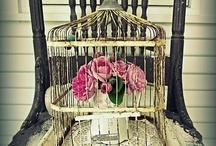 birdcages / by Cindy Deutschendorf