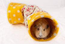 CandE Cosies Cosy Tunnels / A collection of our handmade cosy tunnels designed for guinea pigs, hedgehogs, rabbits, ferrets, rats, degus, chinchillas etc We can also custom make items for small cats and dogs. We can be found at http://www.candecosies.co.uk