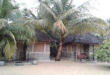 Welcome TO Kalpitiya