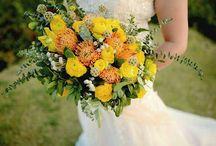Yo & Trish Wedding 3.15.15 (Summer Rustic) / by Trisha Uy