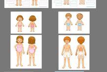 Thema Körper - Kindergarten