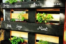 Garden pallets / Repurposing the ubiquitous pallet