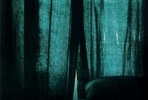 Rideau et fenêtre