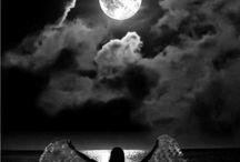 Gecenin sesszliqi