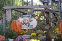Pumpkin Festival / by Stone Mountain Park