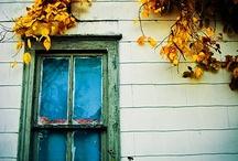 DOORS & WINDOWS ETC.