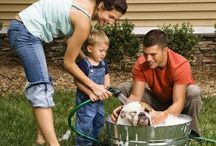 Reclaim Your Family Time