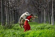 Red Riding Hood / You don't know the whole story.. / by Regulus Major