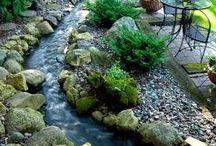 Víz a kertben