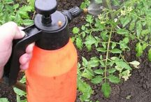 Защита растениц
